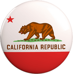 State Vote Button from California
