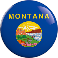 State Vote Button from Montana