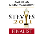 Stevie Award – The American Business Award