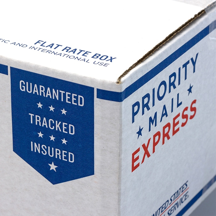 EXPRESS Mail 1~2 days US Shipping Upgrade