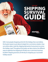 Holiday Shipping Survival Guide